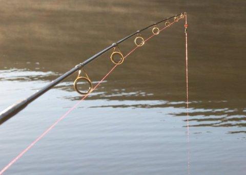 Fishing poles rosemary 39 s blog for River fishing pole