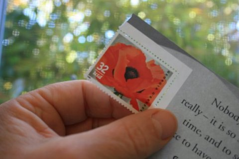 Stamp featuring Georgis O'Keeffe's Red Poppy
