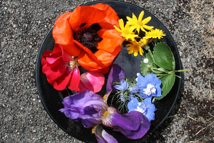 A Floral Color Wheel For Summer Rosemary S Blog