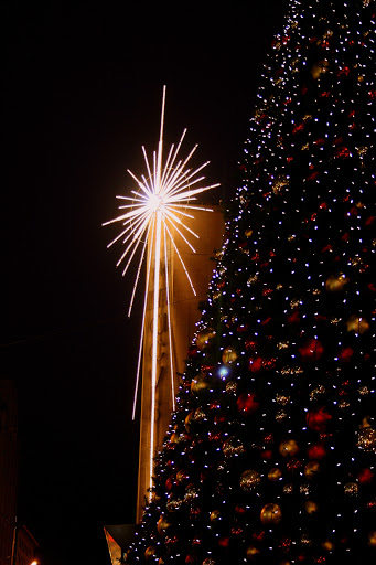 A light in the darkness -- the Macy star and Westlake tree, Seattle
