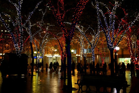 Westlake Park with holiday lights