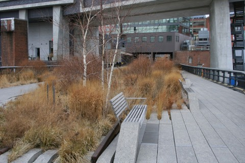 The High Line is dotted with many benches and plantings