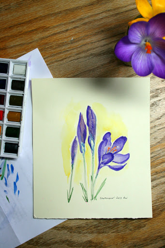 Watercolor sketch of crocuses