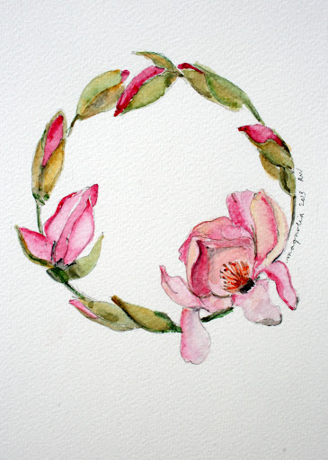 Another watercolor sketch of magnolia blossoms