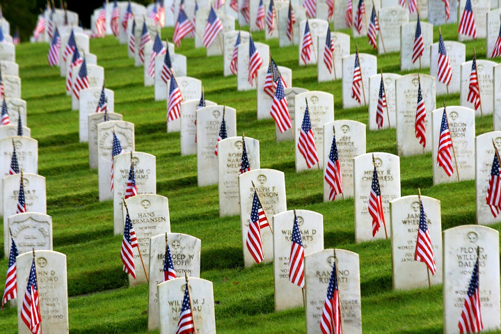Reflections On Memorial Day >> Veterans' Day | Rosemary's Blog