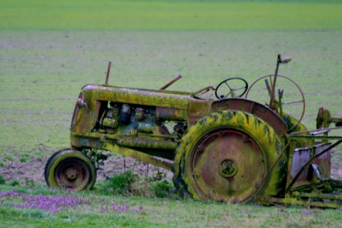 Moss-covered tractor, Whidbey Island