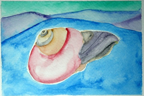 Moon Snail Shell # 91, watercolor sketch with blue -- the best of this lot, I think