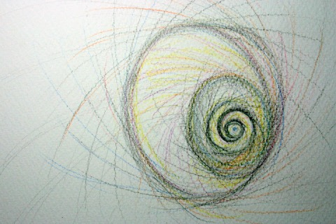 Moon Snail Shell # 81, colored pencil sketch