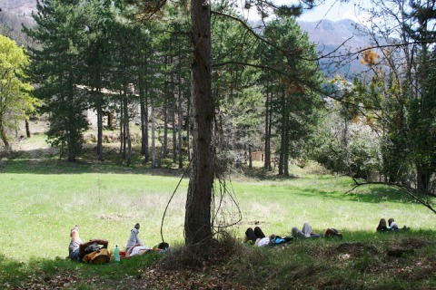 Lunch break and nap in the hamlet of Forest