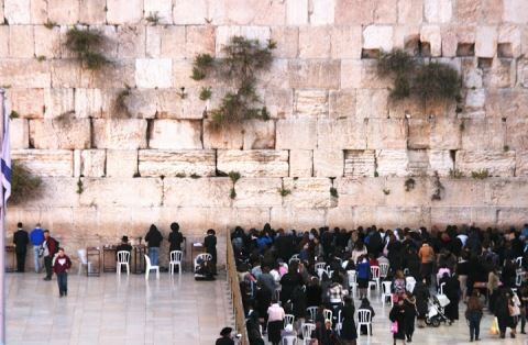 Men's and women's sections of the Western Wall