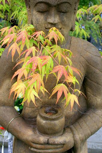 A garden Buddha