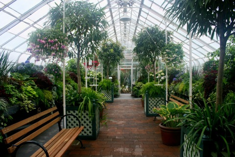 Seasonal room, Volunteer Park Conservatory