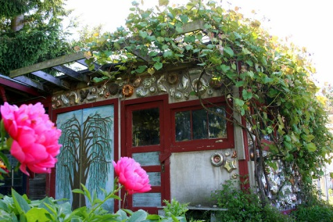 Garden shed with pink peonies, Jello Mold Farm