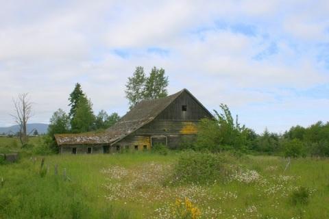 Old ruin along Hwy 101 near Sequim