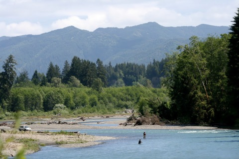 Fisherman in the Hoh River