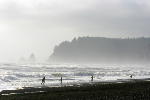 The wild shores at Rialto Beach