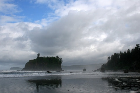 Sea stack at Ruby Beach, Olympic National Park