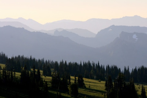 Landscape at Sunrise on Mount Rainier