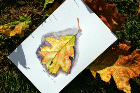 Watercolor sketch of fall leaf