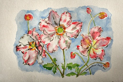 First watercolor sketch of anemones