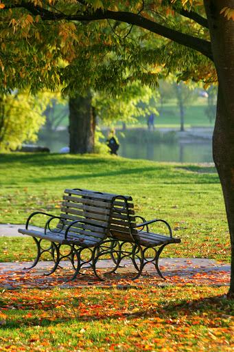 Green Lake benches