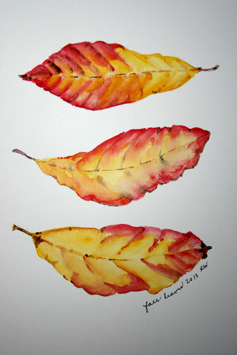 Watercolor sketch of fall leaves