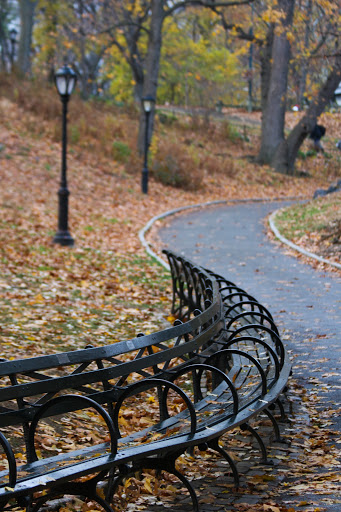 Central Park with path, benches and lamps