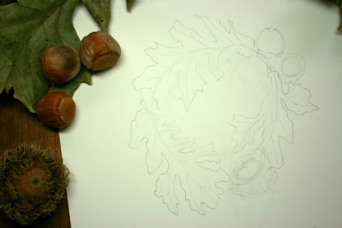 Underlying pencil sketch for my bur oak painting