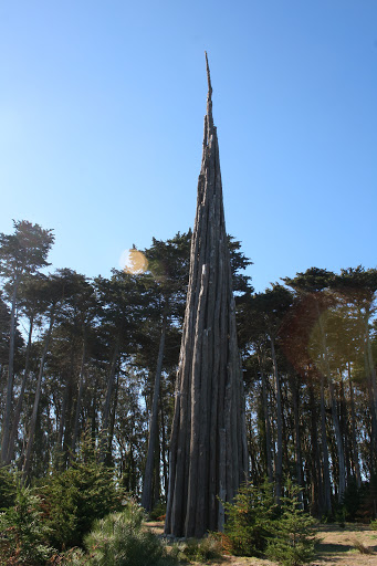 The Spire towers over the Monterey cypress trees nearby