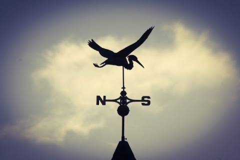 Heron weather vane