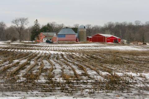 Stubble in the fields near Collegeville, MN