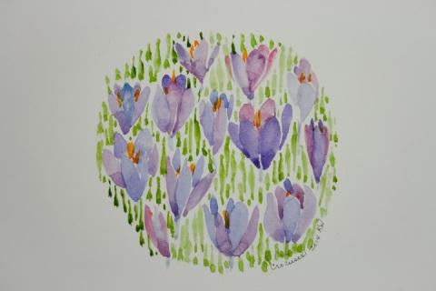 Watercolor sketch of Spring crocuses