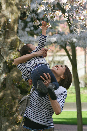 Mother and child, cherry blossom viewing
