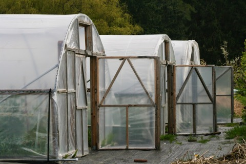 Greenhouses open to the warmer temperatures