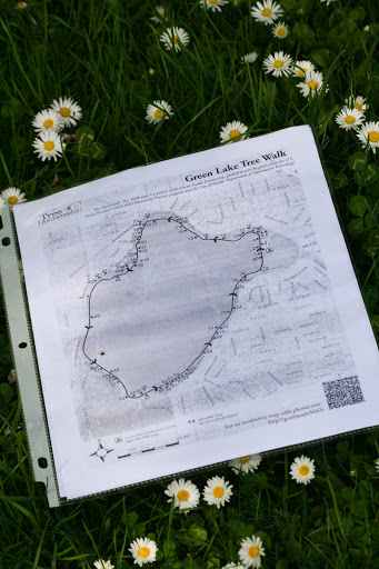 Map for Green Lake Tree Walk