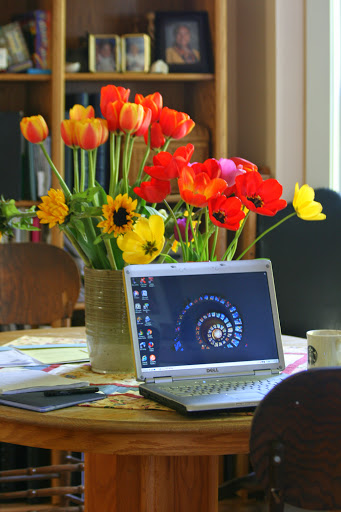 My work table with tulips