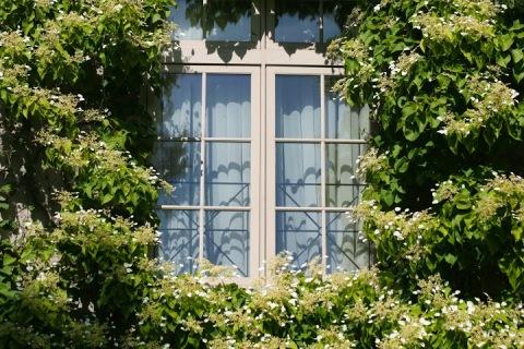 Window on home along Lake Washington Blvd