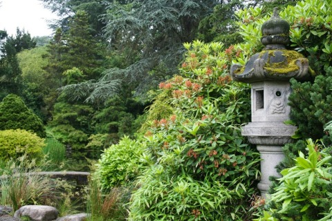 The tranquility of a Japanese garden