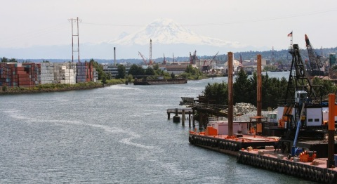 Duwamish River with Mount Rainier
