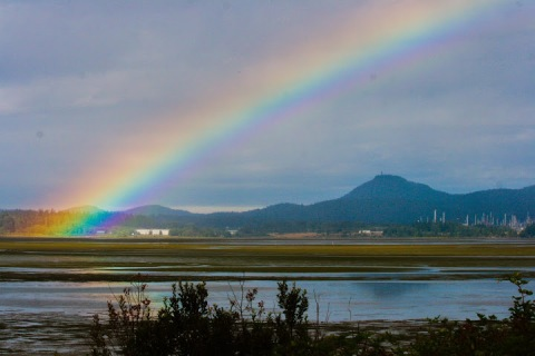 Morning rainbow over Padilla Bay