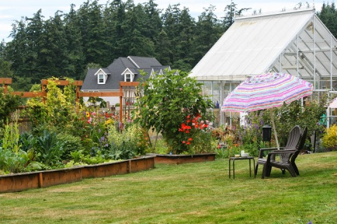 Ed and Mary Epps' backyard garden