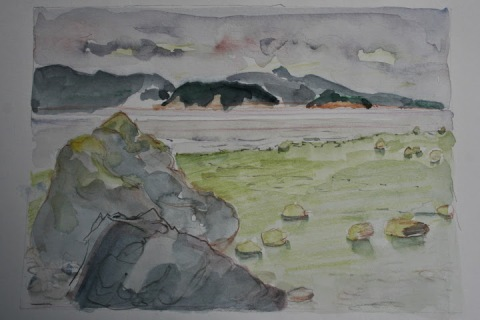 My poor attempt at a landscape sketch of Padilla Bay.  I was unhappy with many things, including the anemic colors.