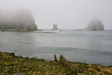First Beach in LaPush with fog-enshrouded sea stacks