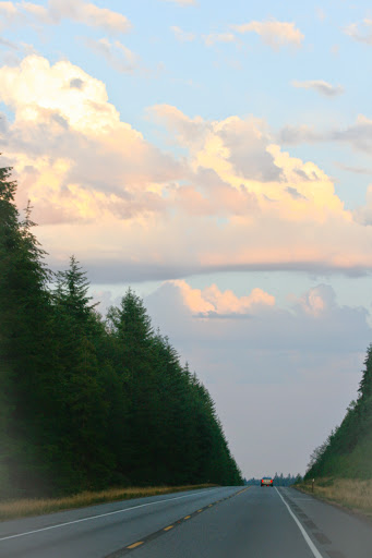 Nearing sunset on Hwy 101, Olympic Peninsula