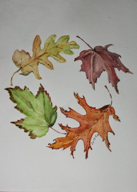 Circle of fall leaves, watercolor sketch