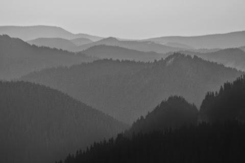 Cascading Cascade Mountains at dawn near Sunrise, Mount Rainier