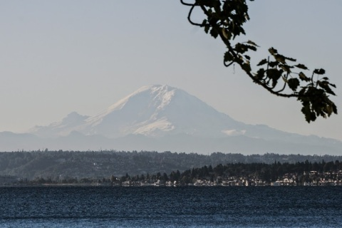 View of Mount Rainier across lake Washington from Seward Park