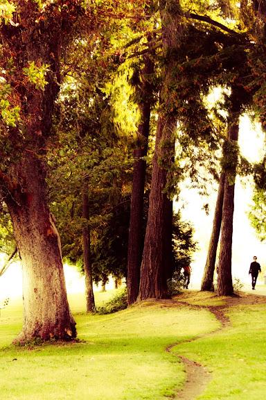 Seward Park, Seattle