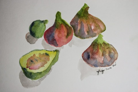 Watercolor sketch of figs
