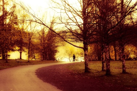 Walker at Green Lake